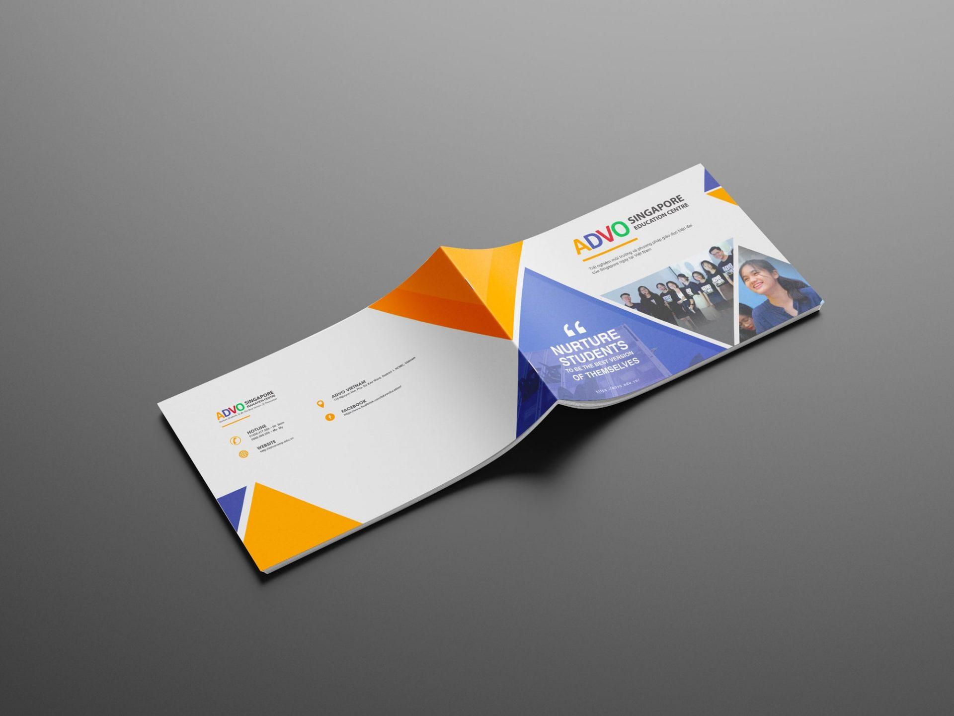 ADVO brochure
